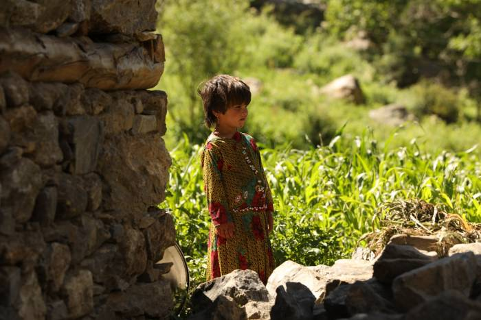 Afghanistan: The Way to Peace
